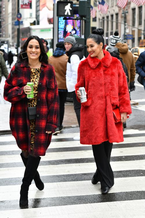Nikki Bella and Brie Bella are trying to stay positive amidst the coronavirus scare.