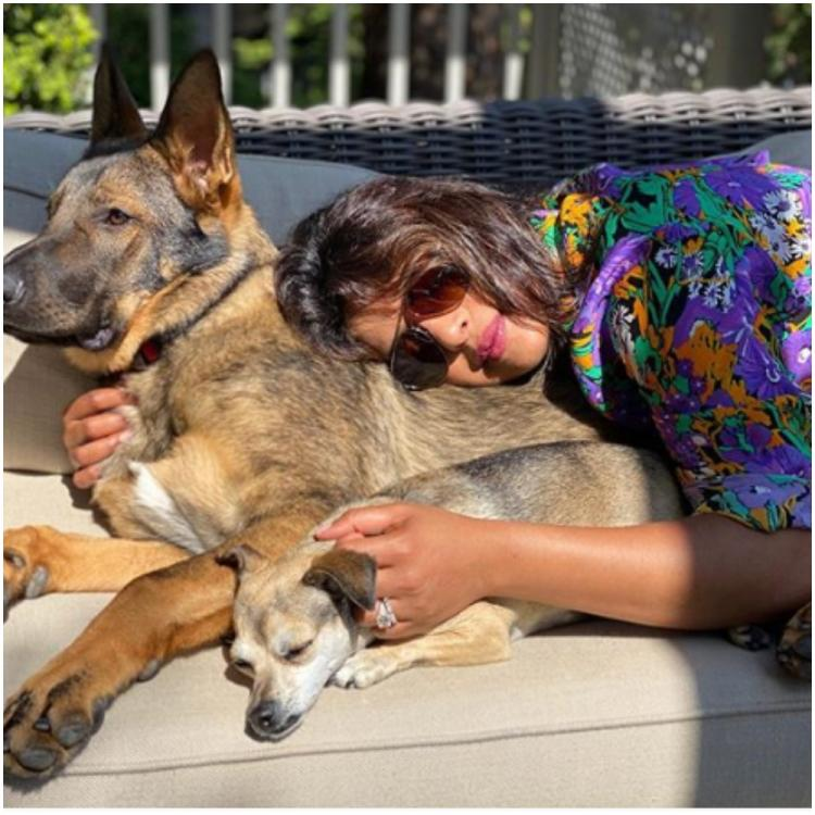 Priyanka Chopra Jonas soaks up the sun as she cuddles up with her pets in a picture PAWfect click