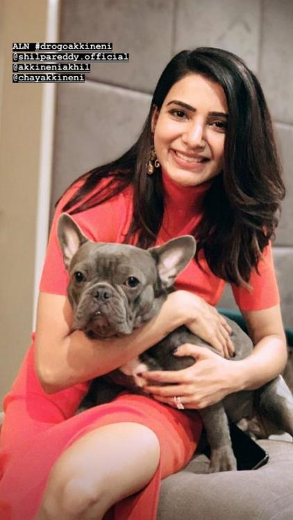 Samantha Akkineni's latest photo with a puppy is too lovely to be missed; Check it out