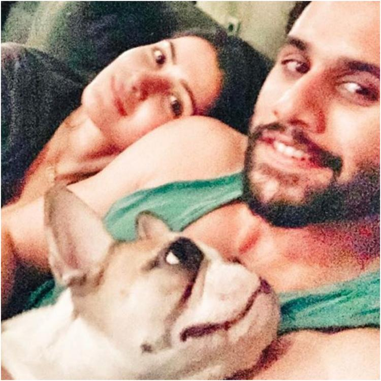 Samantha Akkineni shares a cool pic of Naga Chaitanya chilling with their pet Hash during Quarantine time