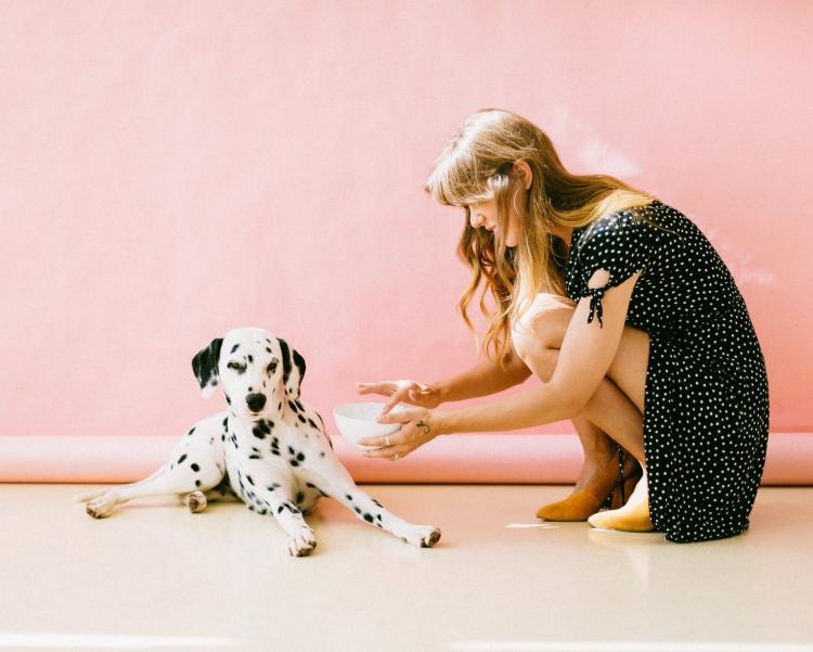 Want to be a dog parent? Here are 5 signs that you're ready to foster a dog before owning one