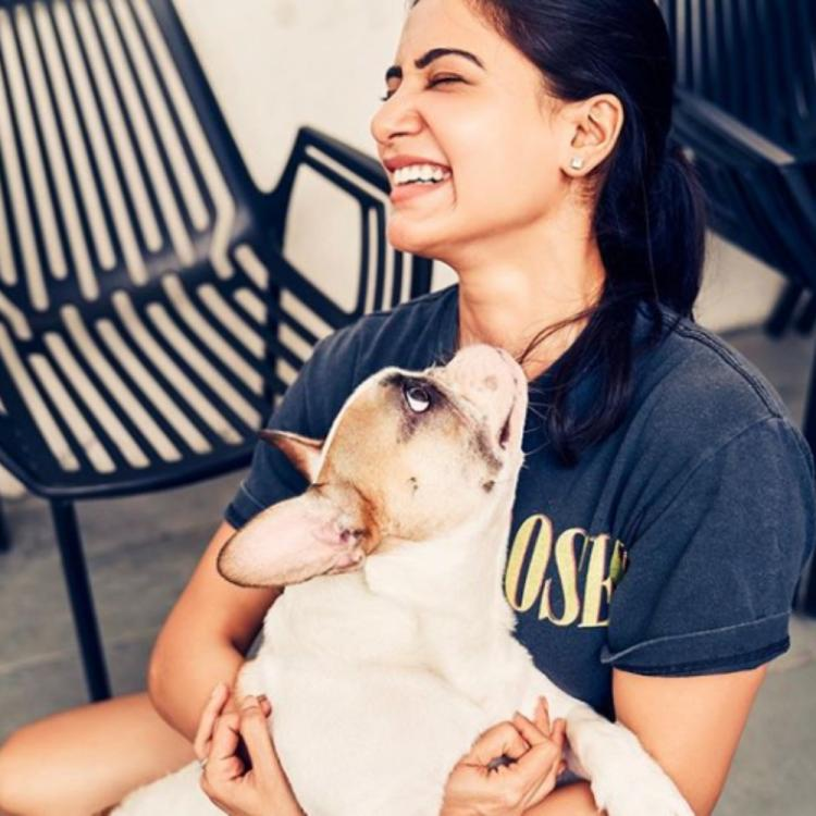 Samantha Akkineni is quite elated as she gets to spend time with her doggo; View PIC