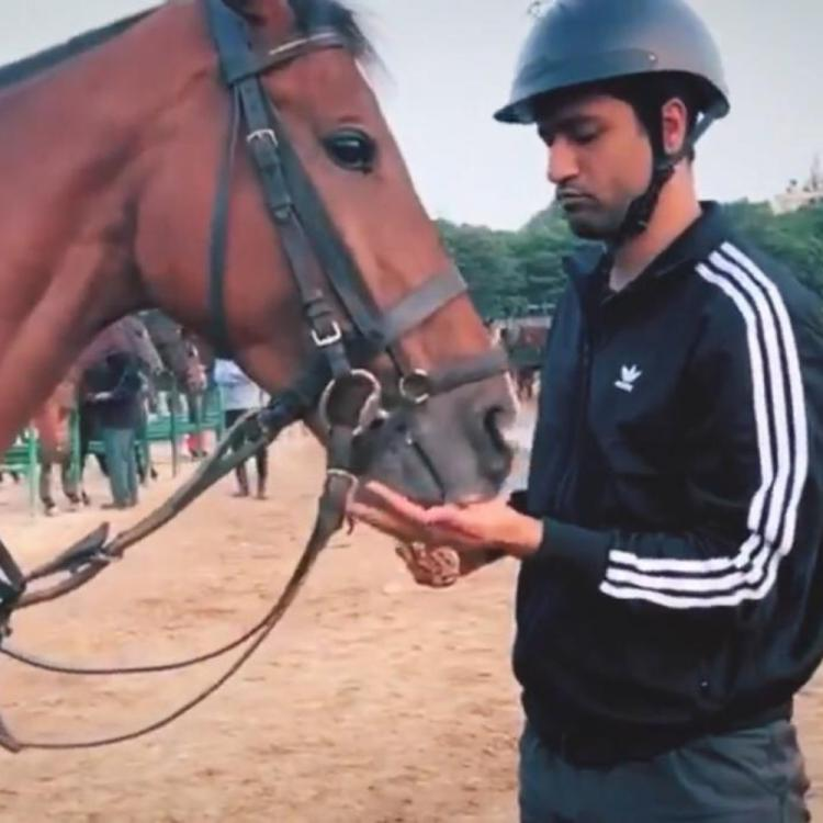 Takht: Vicky Kaushal begins with horse riding lessons for Karan Johar's multistarrer