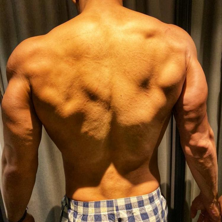 Tiger Shroff shares a picture of his muscular shoulders and back but THIS is what he is referring to; Find out