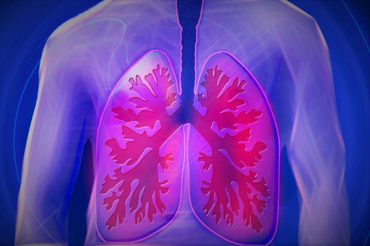 5 Ways to cleanse your lungs naturally amidst all the air pollution