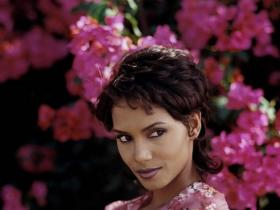 actress,hollywood,Halle Berry,Hollywood,hollywood trending,Bruised