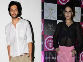 News,Zareen Khan,music video,Ali Fazal