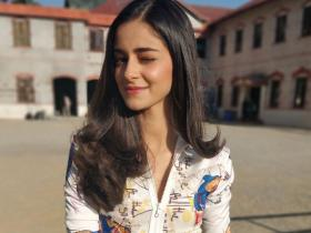News,bollywood,Varun Dhawan,Ananya Panday