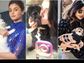 People,Celebrity pets,celebrity pups,Bollywood pets