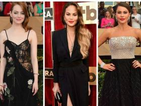 Emma Stone,Best Dressed,Sofia Vergara,Amy Adams,Chrissy Teigen,Viola Davis,Evan Rachel Wood,Taraji P. Henson,Screen Actors Guild Awards 2017