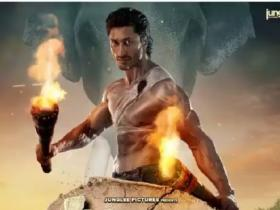 Vidyut Jammwal,Box Office,junglee,junglee box office collection