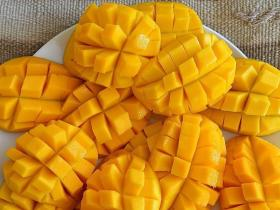 Food & Travel,Mango,Mango Recipe