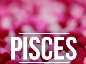 People,valentines day,Pisces,Lovers guide