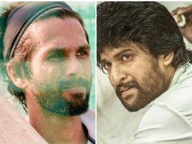 Shahid Kapoor,nani,arjun reddy,South,Jersey