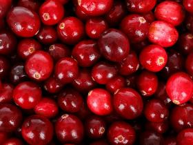 food,health,Health & Fitness,cranberry benefits