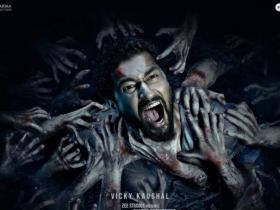 Box Office,Vicky Kaushal,Bhoot Box Office Collection
