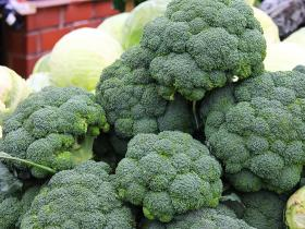 healthy food,health and fitness,Health & Fitness,broccoli