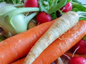 Food & Travel,health and nutrition,carrots,radishes