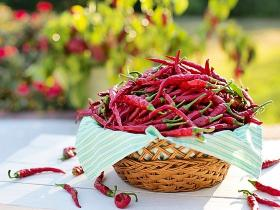 food,weight loss,Health & Fitness,red chillies