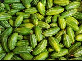 weight loss,health benefits,Health & Fitness,Pointed Gourd