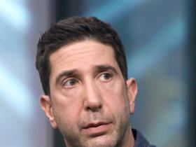 friends,David Schwimmer,Hollywood
