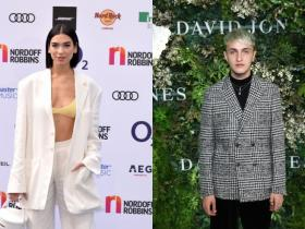 Anwar Hadid,Dua Lipa,Hollywood,Hollywood news