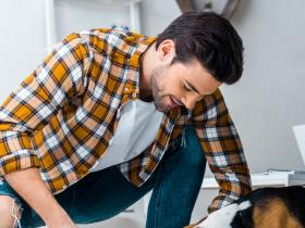 People,pet safe cleaning