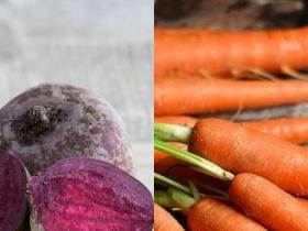 health benefits,beetroot,Health & Fitness,carrot