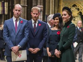 Meghan Markle and Prince Harry,Kate Middleton and Prince William,Hollywood,Australia Fires