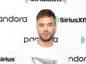 One Direction,Liam Payne,Hollywood