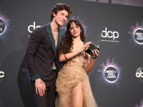Hollywood,Camila Cabello Shawn Mendes