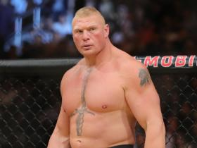 WWE,Brock Lesnar,Hollywood,Wrestlemania 36