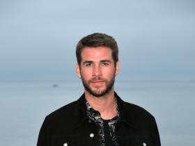 Liam Hemsworth,Hollywood