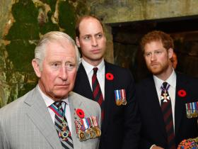 Prince William,Prince Charles,Prince Harry,royal family,Hollywood,Coronavirus,COVID-19