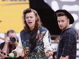 One Direction,Harry Styles,Liam Payne,Hollywood,Fine Line