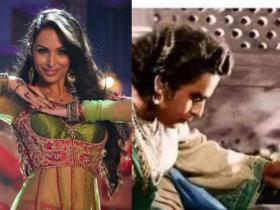 News,malaika arora,housefull 2,lockdown,Anarkali Disco Chali