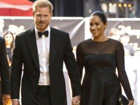 Meghan Markle,Prince Harry,The Lion King,Hollywood