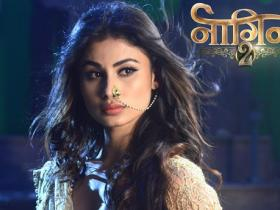 Mouni Roy,Serial updates,Naagin 2,serial updates