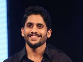 Naga Chaitanya,Sai Pallavi,South
