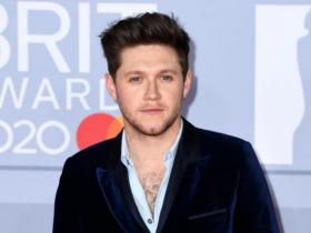 Niall Horan,Hollywood