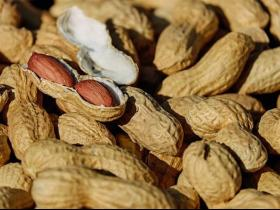 weight loss,health,Health & Fitness,peanuts