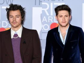 One Direction,Harry Styles,Niall Horan,Hollywood,BRIT Awards 2020