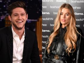 One Direction,Niall Horan,Hollywood,Arabella Chi