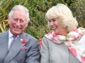 Prince Charles,Hollywood,Camilla,COVID 19