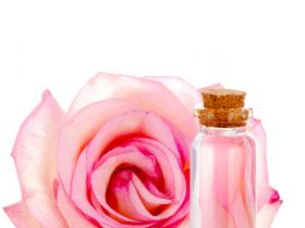 Beauty,hair care,benefits,rose water