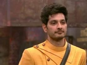 Bigg Boss Telugu 3,South,Ali Reza,Ravi