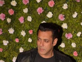 News,salman khan,anil kapoor,No Entry