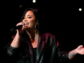 Demi Lovato,Super Bowl,Hollywood,Dan & Shay