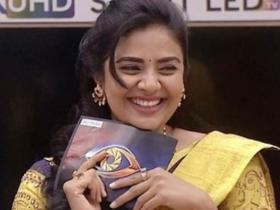 Bigg Boss Telugu 3,South,Sreemukhi,Sushruth