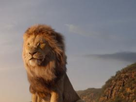 Beyonce,Donald Glover,The Lion King,Hollywood